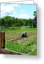 Woman Planting Garden Near Barn Greeting Card