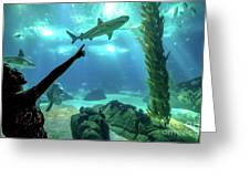 Woman Shark Enjoyng Greeting Card