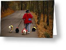 Woman Walks Her Army Of Dogs Dressed Greeting Card