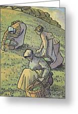 Women Gathering Mushrooms Greeting Card