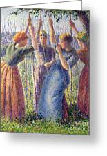 Women Planting Peasticks Greeting Card by Camille Pissarro