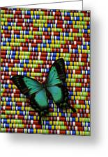 Wonderful Green Butterfly Greeting Card