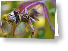 Wonderful Weeds Greeting Card
