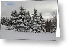 Wonderful Winter Greeting Card