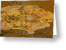Wood Abstracted Greeting Card