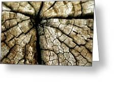 Wood Cross Greeting Card by Tina Valvano