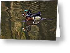 Wood Duck Autumn Reflections Greeting Card