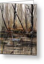 Wood Duck On Pond Greeting Card
