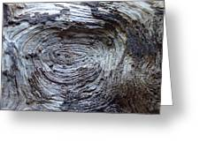 Wood Grain Of Buena Vista  Greeting Card