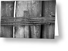 Wood Pilings Tied With Old Rusted Rope Greeting Card