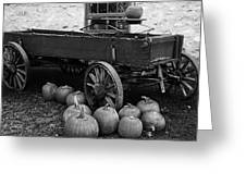 Wood Wagon And Pumpkins Black And White Greeting Card