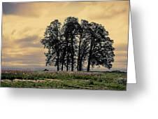 Woodburn Oregon - Sky Lights Greeting Card