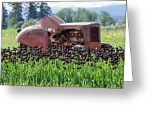 Woodburn Oregon - Tractor And Field Of Tulips Greeting Card