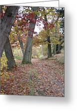 Wooded Entrance Greeting Card
