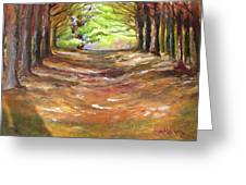Wooded Sanctuary Greeting Card