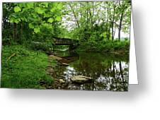 Wooded Valley Of The Patapsco River North Branch Maryland Greeting Card