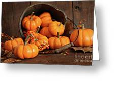 Wooden Bucket Filled With Tiny Pumpkins Greeting Card