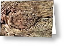 Wooden Eye 1 Greeting Card