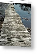 Wooden Wetland Path Greeting Card
