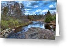 Woodhull Creek In May Greeting Card