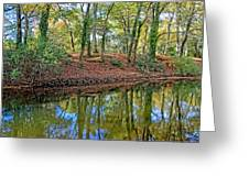 Woodland Canal 2 Greeting Card