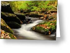 Woodland Fantasies Greeting Card