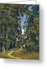 Woodland Grove Greeting Card