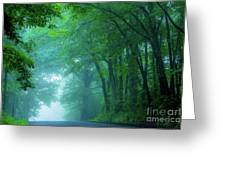 Woodland Mist Greeting Card