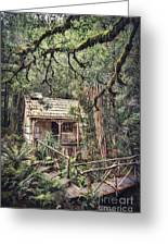 Woodland Mysteries Greeting Card
