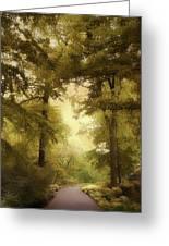Woodland Passage Greeting Card
