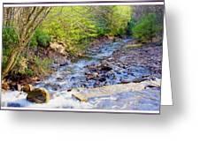 Woodland Stream And Waterfall, Hickory Run, Pocono Mountains Greeting Card