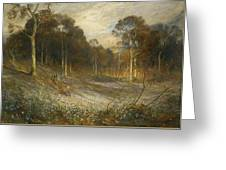 Woodlands Gay With Lady Smocks Greeting Card