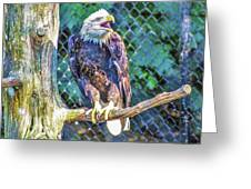 Woodlands Nature Station Greeting Card