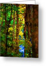Woods Approach To Lake Greeting Card