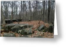 Woods Of Big Round Top Greeting Card