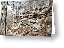 Woods Of Lake Guntersville Greeting Card