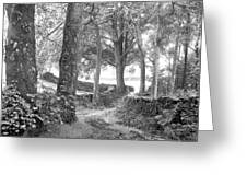 Woods, Troutbeck, Windermere Greeting Card