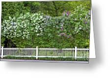 Woodstock Village Lilacs Greeting Card