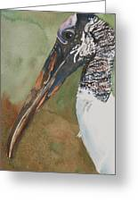Woodstork Eye Greeting Card