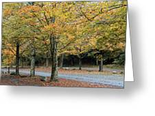 Words End State Park Drive Greeting Card