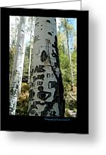 Words Written In The Trees 1 Greeting Card
