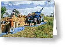 Workers Loading Rice Greeting Card
