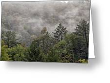 Worlds End State Park Fog Greeting Card