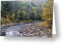 Worlds End State Park Loyalsock Creek Greeting Card