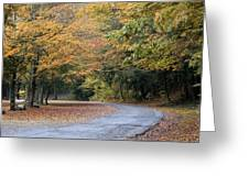 Worlds Ends State Park Road Greeting Card