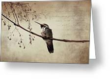 World's Smallest Bird Greeting Card