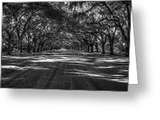 Wormsloe Plantation 2 Live Oak Avenue Art Greeting Card