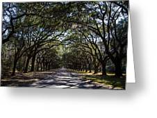Wormsloe Avenue Greeting Card