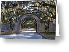 Wormsloe Gates Greeting Card