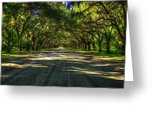 Shadows Of Wormsloe Plantation Oak Avenue Georgia Art Greeting Card
